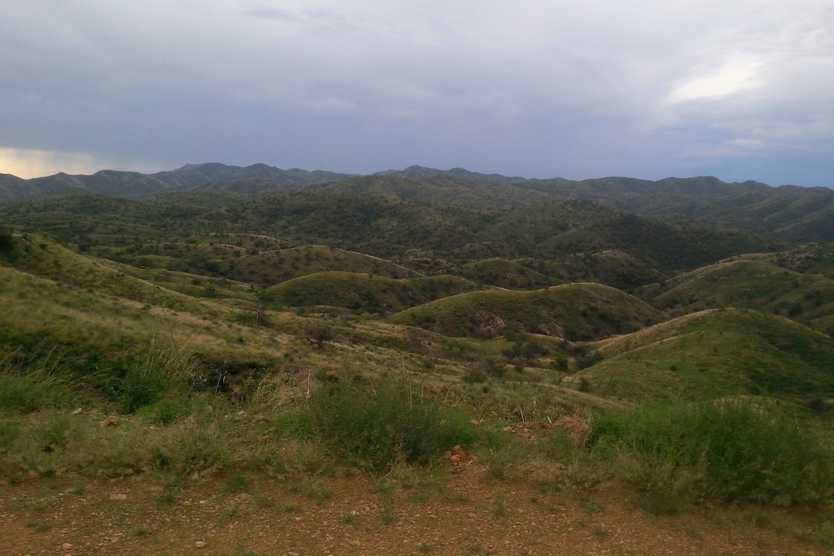 Pajarito Wilderness, from Ruby Road
