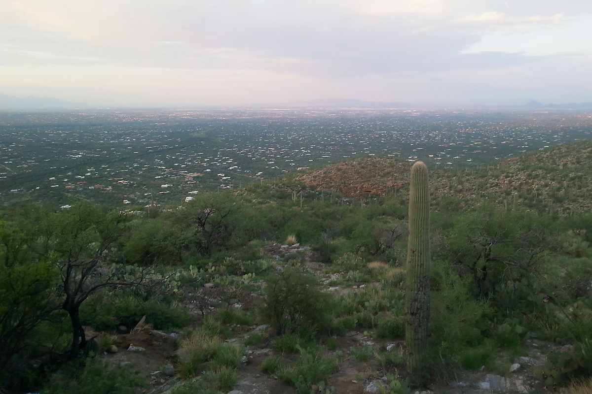 Tucson, from Babad Do'ag Vista