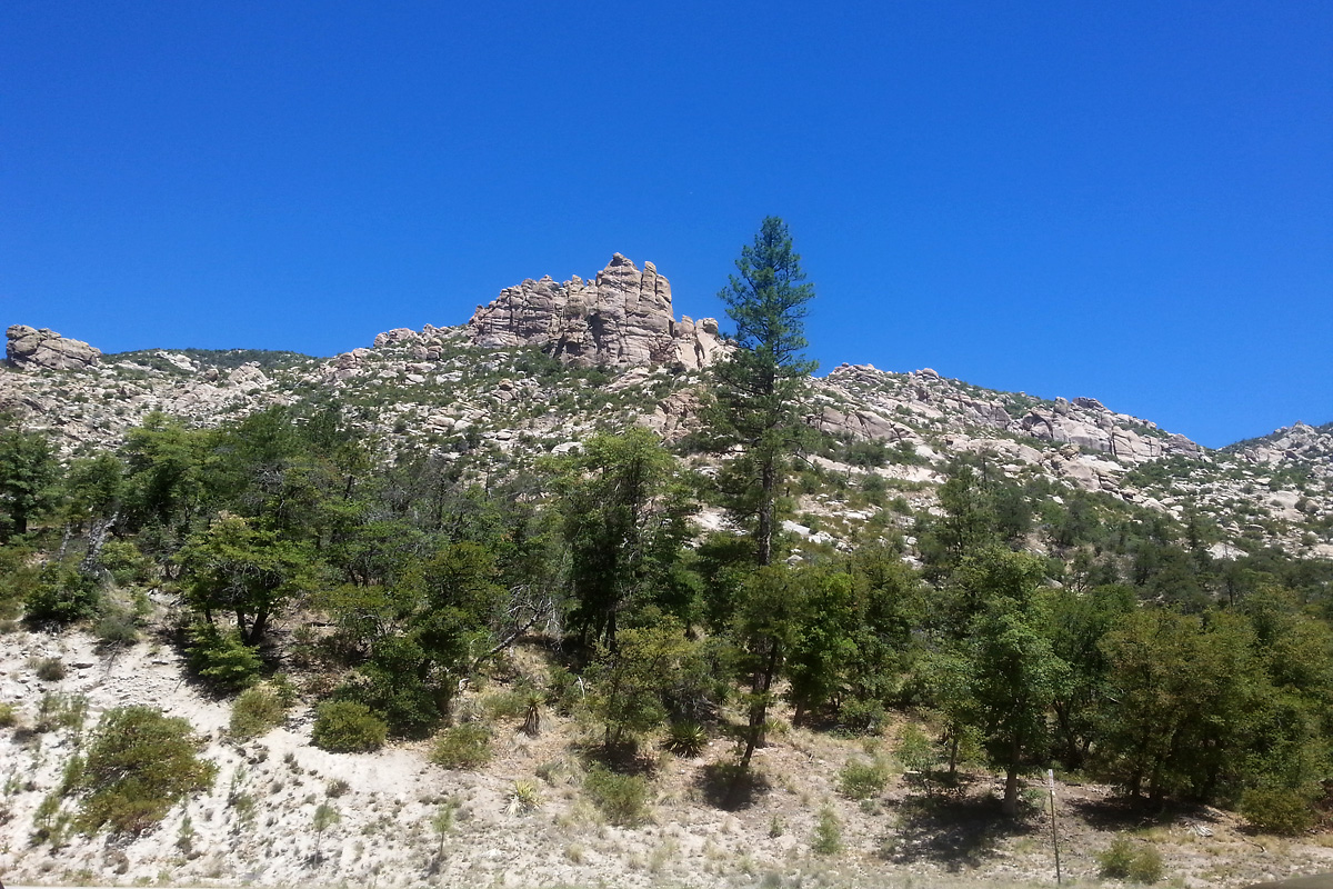 Looking up from Bear Canyon