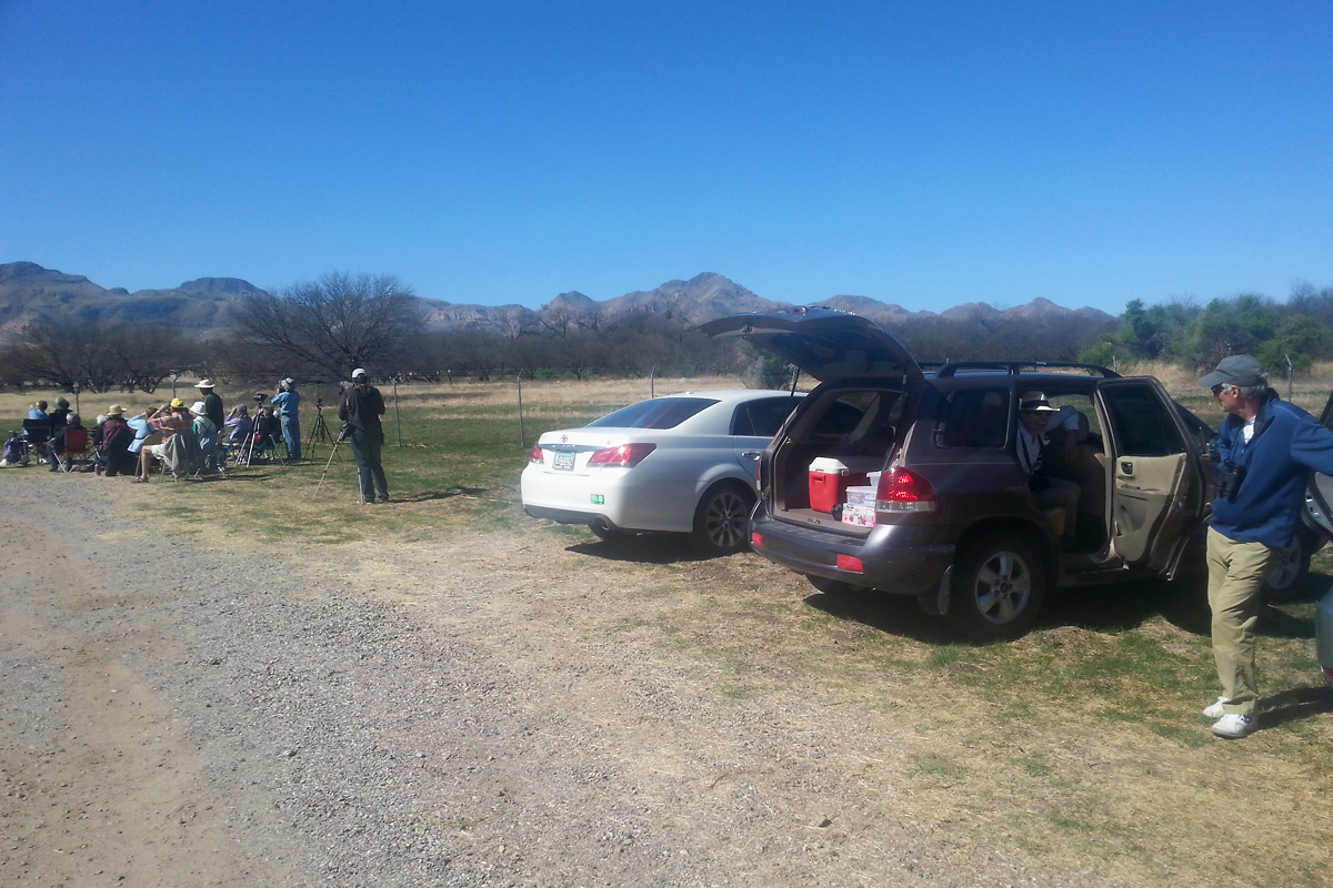Birders at the Tubac hawk watch