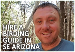 Richard Fray, SE Arizona Birding Guide